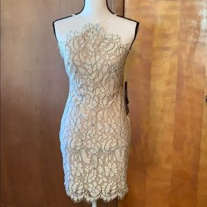 NWT Lulus Beige and Ivory Lace Bodycon Dress